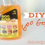 DIY Goo Gone For Cheap