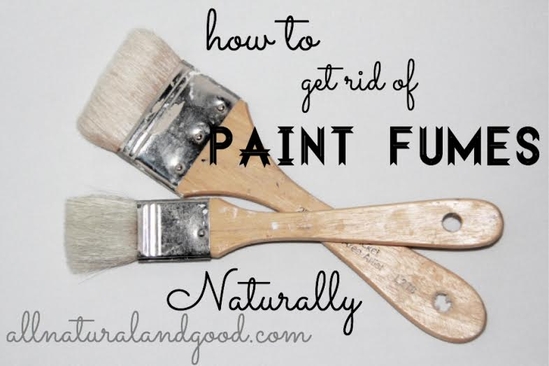 How To Get Rid Of Paint Fumes All Natural Good