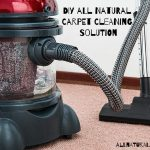 DIY All Natural Carpet Cleaning Solution