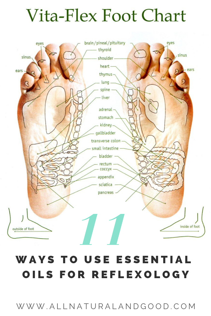 Reflexology with essential oils is a great way to benefit from a foot massage. One of the best ways to benefit from essential oils is by applying them topically to the bottoms of your feet. Applying essential oils to your feet is a great way to absorb the oils into your body. With over 2,000 pores in each foot, they have some of the largest pores on your body. #reflexology #essentialoils #vitaflex #footmassage