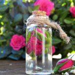 Essential Oils For Female Hormonal Health