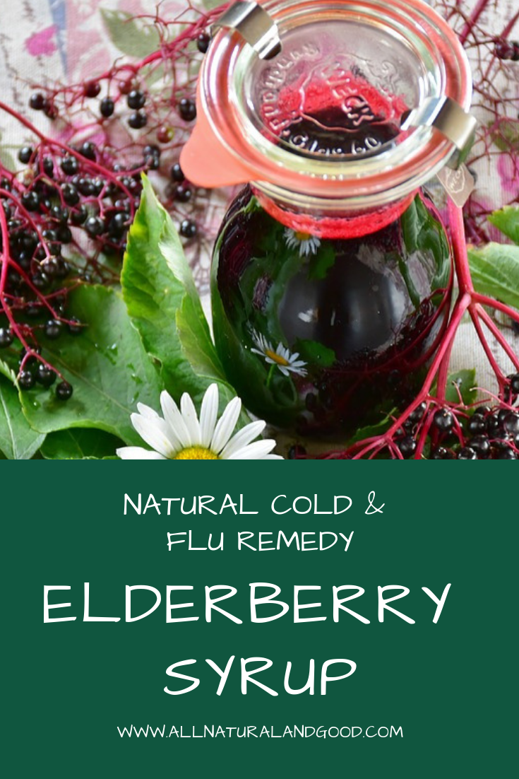 Elderberry syrup for a cold or flu will help you get better faster. If you haven\'t heard of elderberry by now, it is known for it\'s natural health benefits. The berries of the elder plant are especially amazing, being more potent than the elderflower. Elderberry syrup is one of the best things to use to boost the immune system, fight off illness and even recover from the flu! #elderberry #elderplant #elderflower #elderberrysyrup