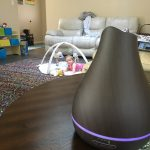 VicTsing Essential Oil Diffuser Review