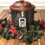 VitaClay Organic Cooker Review