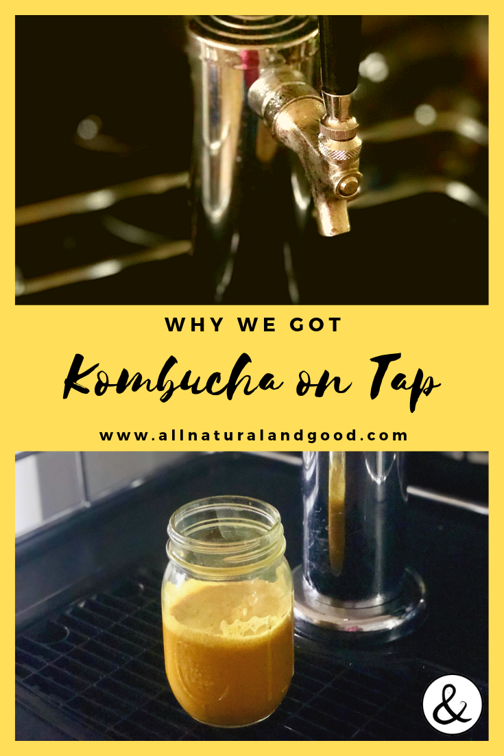 Kombucha is a fermented tea beverage that has amazing health benefits. Having been drinking kombucha for awhile, we figured it was time to get it on tap at our house. #kombucha #kombuchaontap